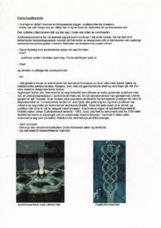 sølv-og-sorl_prosjektbeskrivelse_02